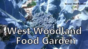 ww food garden2