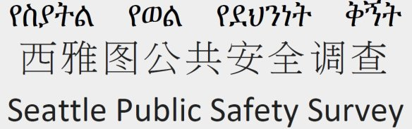 public-safety-survey-02