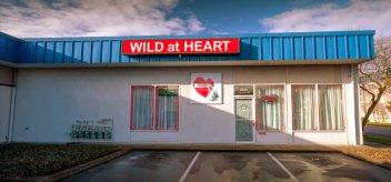 wild-at-heart-ballard-west-woodland
